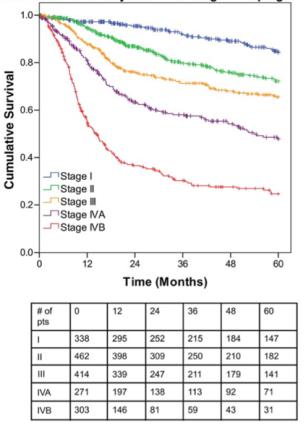 TNM Classification of Malignant Tumours – 8th edition Dec